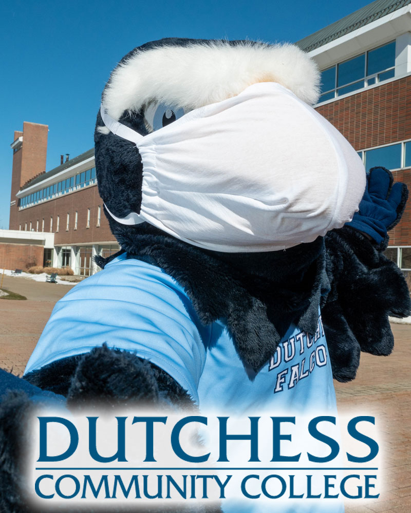 Dutchess Community College mascot Falco